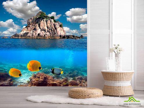 обои Рыбы и море Фотообои Рыбы вблизи острова