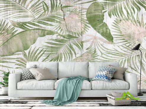 обои тропические листья Фотообои Листья на бетоне