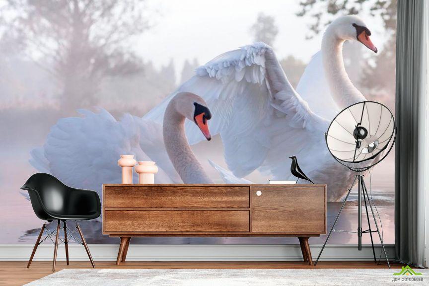 Фотообои Лебеди