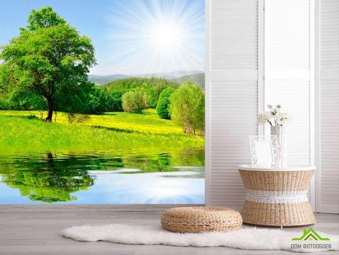 обои Природа Фотообои Солнце, вода, дерево