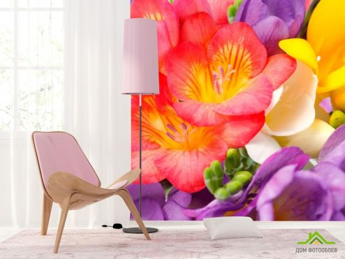 Тюльпаны Фотообои Закругленные тюльпаны купить