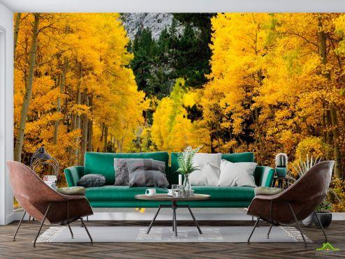 Фотообои Природа по выгодной цене Фотообои Дорога в осень