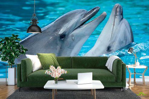 Дельфины Фотообои Нежность дельфинов