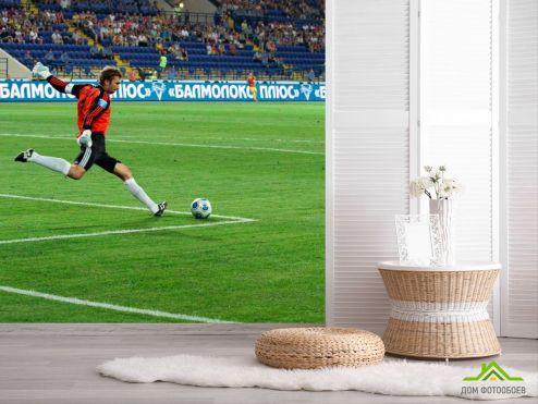 обои Спорт Фотообои Вратарь начинает атаку