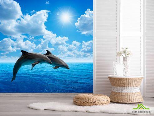 обои Животные Фотообои Прыжки дельфинов