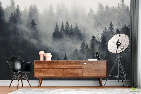 Природа Фотообои Туманный лес купить