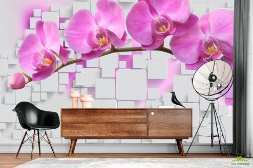 Белые  Фотообои Орхидеи