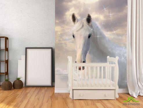 обои Лошади Фотообои Белоснежная красавица