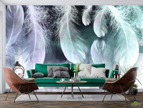 Фотообои перья по выгодной цене Фотообои Воздушные перья