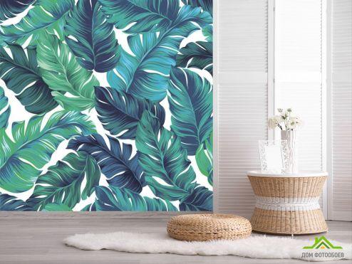 обои тропические листья Фотообои Листья векторные