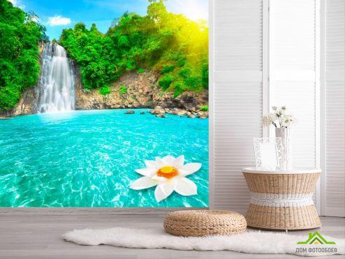 обои Природа Фотообои Лилия на воде