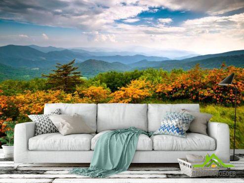 лес Фотообои Дикое дыхание, горы