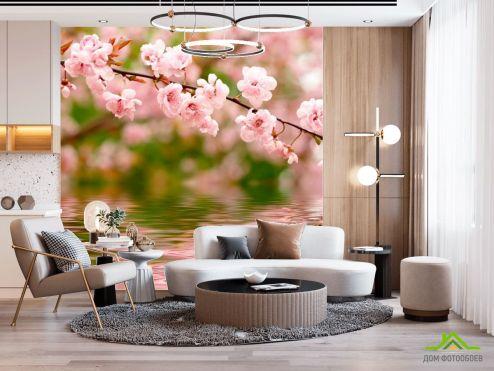 Вишня Фотообои Речная вишня цветет