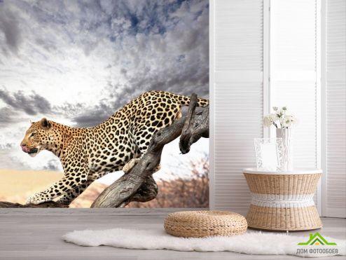 обои Гепарды Фотообои Гепард на дереве