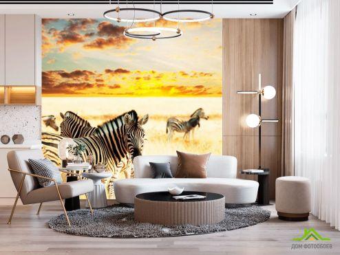 Зебры Фотообои Стадо зебр