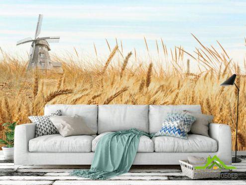Природа Фотообои Поле пшеницы купить