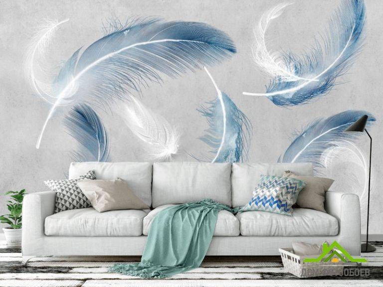 Фотообои Перья синие