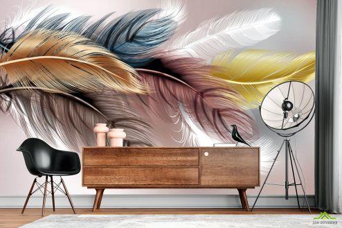 перья Фотообои Перья разноцветные