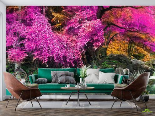 Розовые деревья Фотообои Розовый лес