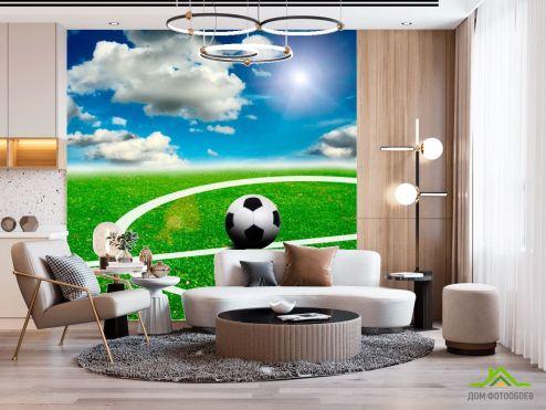 Спорт Фотообои Мяч на поле