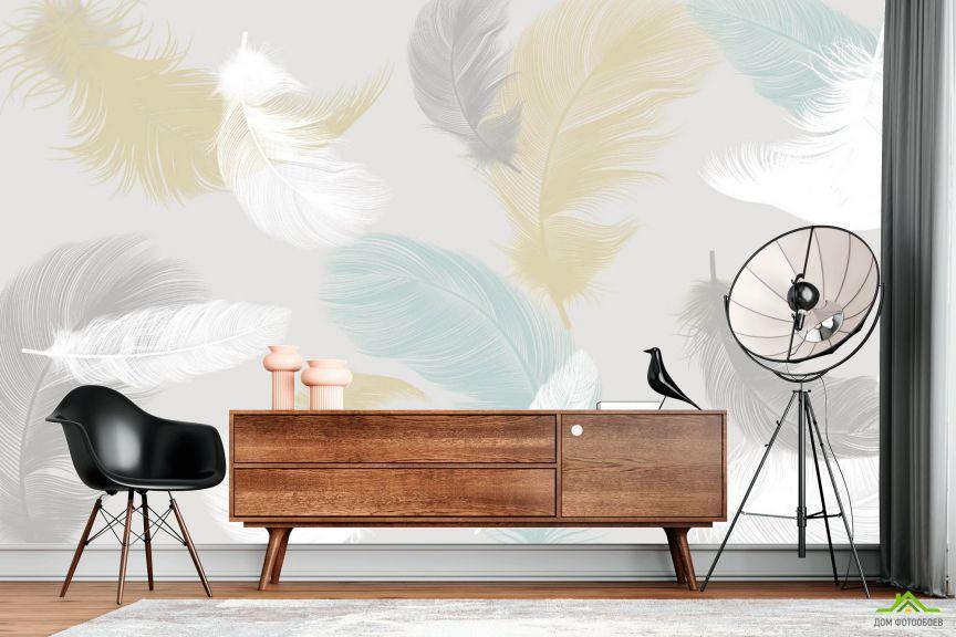 Фотообои Нежные перья