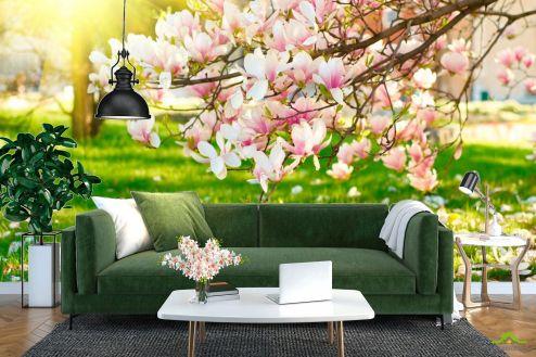 Розовые деревья Фотообои Отцвели вишневые цветы