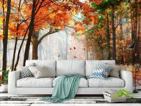 Оранжевые  Фотообои Падают листья