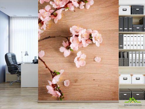 обои Цветы Фотообои Вишневые цветы на полировке