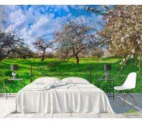 Фотообои Цветение в сад