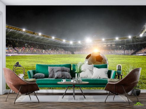 Спорт Фотообои мяч на футбольном поле купить