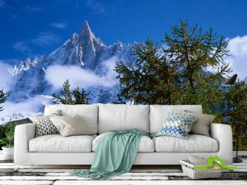 обои Горы Фотообои Небо, гора, ёлки