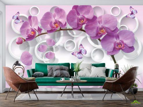 Орхидеи Фотообои сиреневая орхидея и белые круги