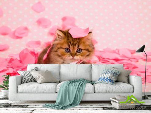 Коты Фотообои Котенок в лепестках