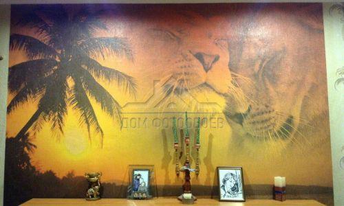 Фотообои в интерьере  - Фотообои Пальма, пляж, львы