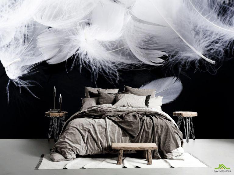 Фотообои белые перья на черном фоне