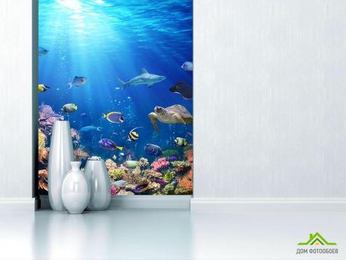 Фотообои Море по выгодной цене Фотообои Солнечные лучи под водой