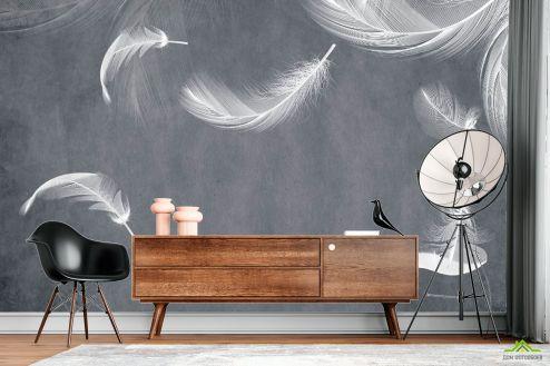 перья Фотообои Белые перья на сером