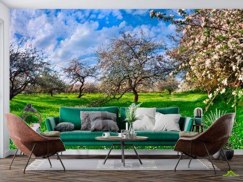 Природа Фотообои Цветение в сад