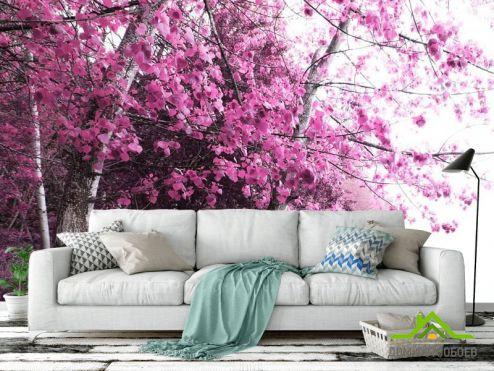 Розовые деревья Фотообои Розовое дерево
