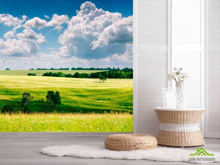 Фотообои Небо, тучи, поле