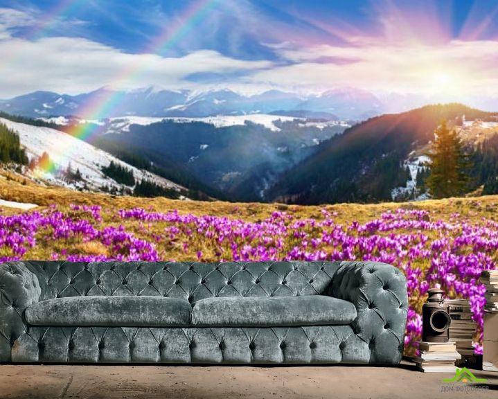 Фотообои поляна с сиреневыми цветами в горах