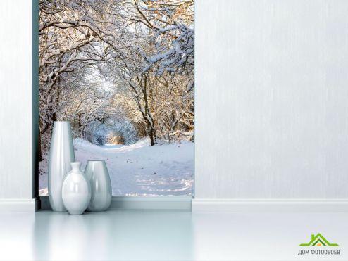 обои Природа Фотообои Пришла зима