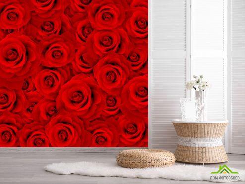 Красные обои Фотообои Букет роз алых