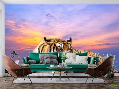 Фотообои разные по выгодной цене Фотообои тигр