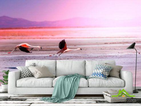 обои Птицы  Фотообои Два фламинго