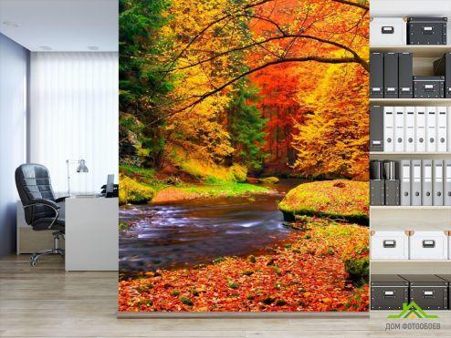 обои Лес Фотообои Вода, ручей, осень