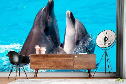 Дельфины Фотообои Два дельфина купить