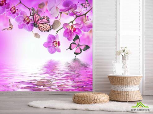 Орхидеи Фотообои орхидеи с бабочками над водой