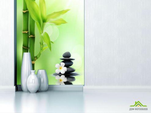 обои Природа Фотообои бамбук в воде