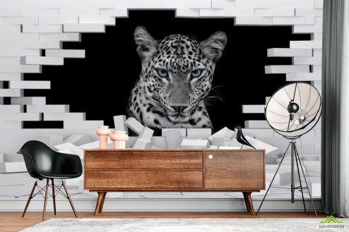 3Д  3д фотообои Леопард